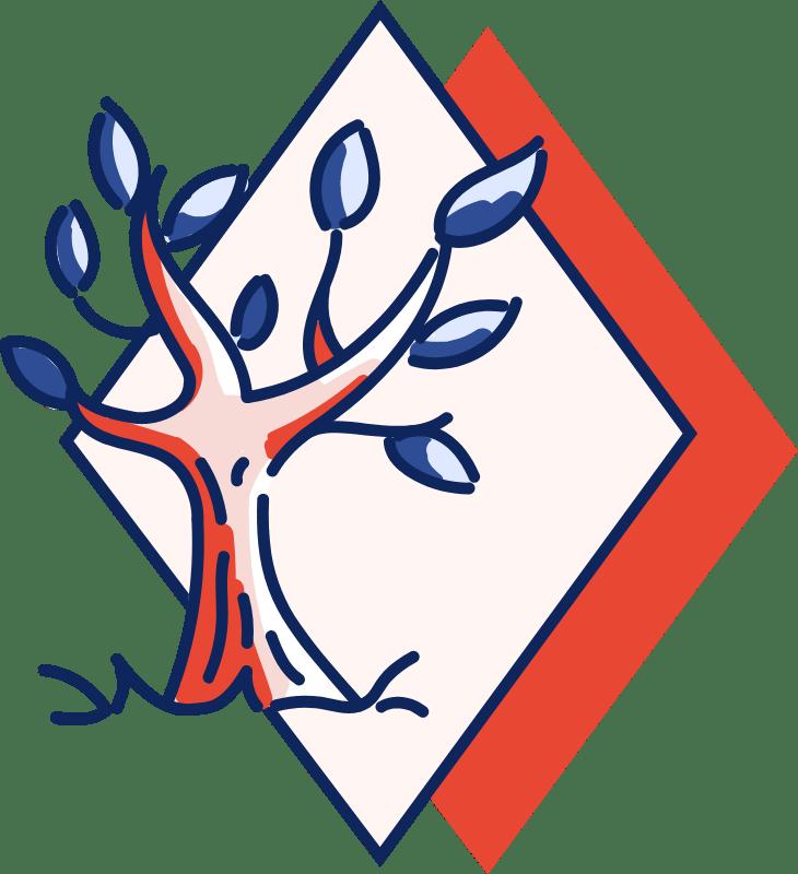 Agence-Marketplace-Maitrise
